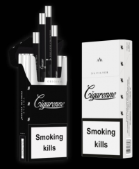 Cigaronne Extra Long cigarettes 10 cartons