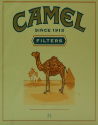 camel filters since 1913 cigarettes 10 cartons