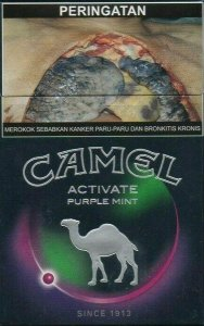 Camel Active Purple Mint cigarettes 10 cartons