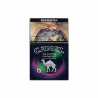 Camel Activate Purple Mint cigarettes 10 cartons